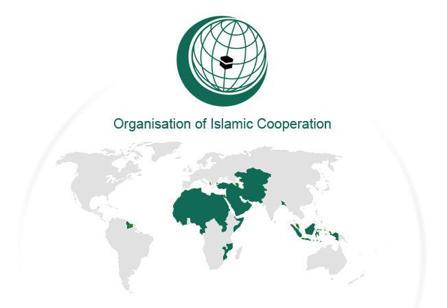 مقبوضہ کشمیر کی خصوصی حیثیت کے خاتمے کیخلاف پاکستان کو پہلی سفارتی کامیابی