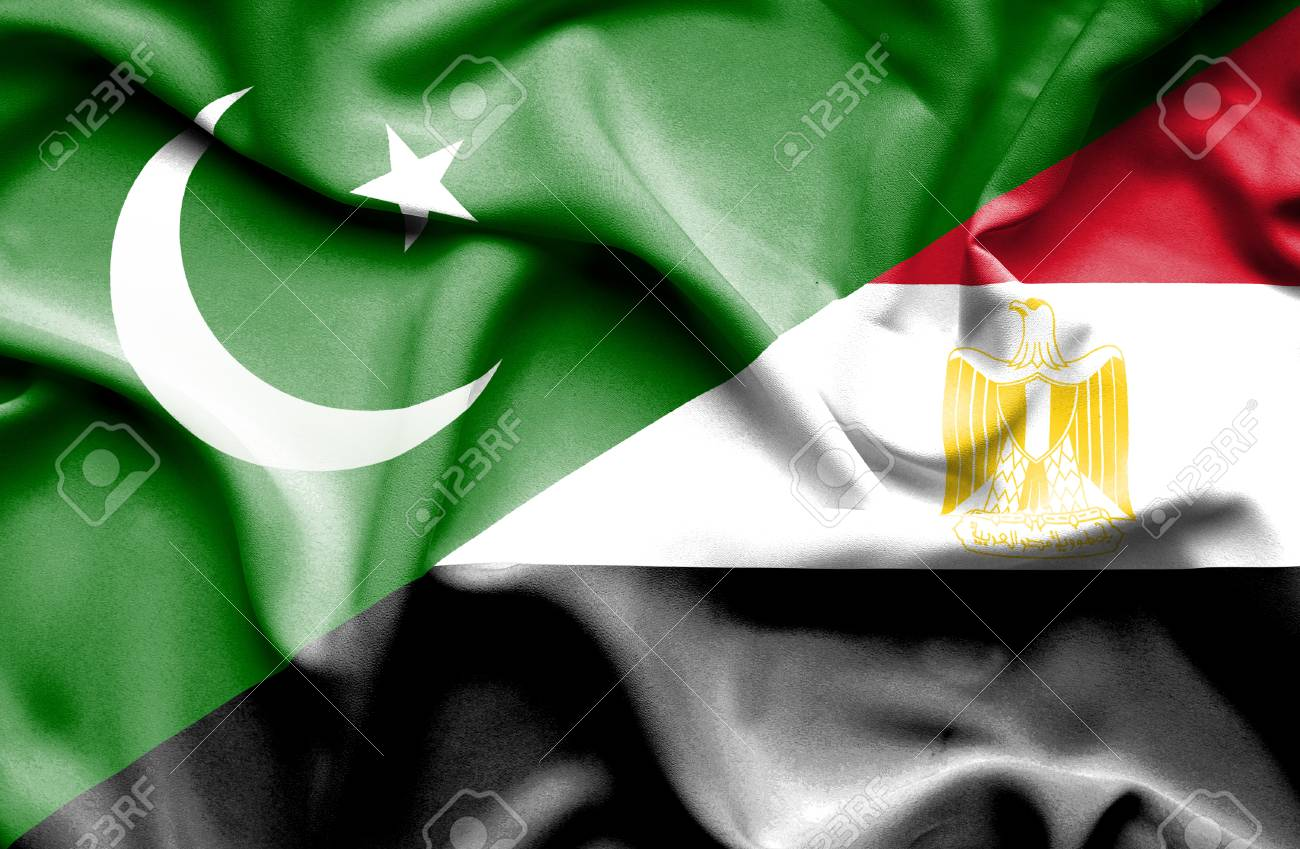 Photo of مصر نے پاکستان میں کتنے ارب ڈالر سرمایہ کاری کی خواہش کا اظہار کر دیا ؟