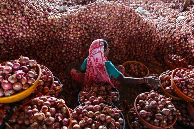Photo of Pakistan receives onion export order from Bangladesh after 15 years